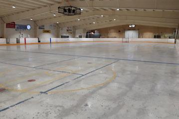 Hockey Arenas & Sporting Facilities